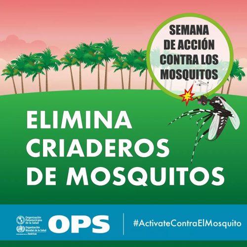 Dengue- ELIMINAR CRIADEROS