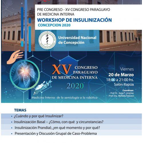 Workshop de Insulinización – Concepción 2020